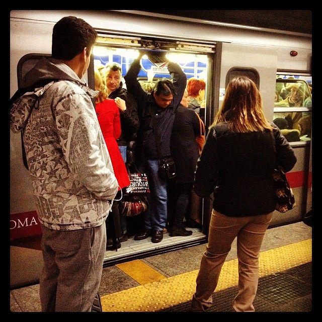 Scene di panico quotidiano #rome #italy #roma #italia #montitiburtini