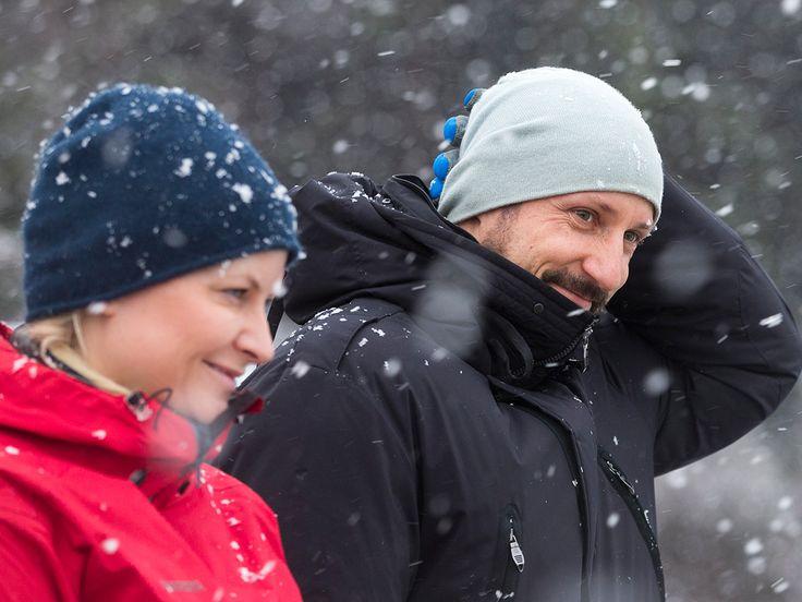 Snø, sludd og surt vær la en naturlig ramme for DD.KK.HH. Kronprinsen og Kronprinsessens møte med redningshunder og hundeførere på Ås i dag. Hundeekvipasjene fra Norske Redningshunder har vært ute en vinterdag før.