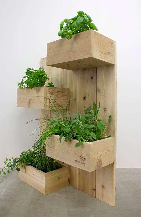 Name Four Square Vertical Garden Plant Stand Upright Planter Cedar Wall Herb In 2019 Houer