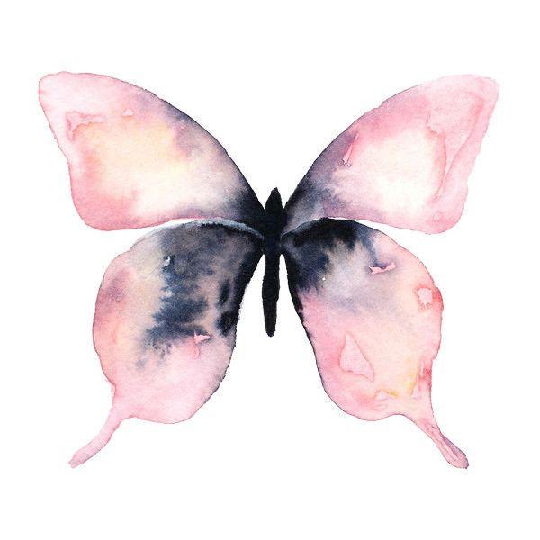 Best 25+ Butterfly background ideas on Pinterest | Canvas ...