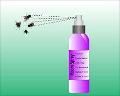 Make a Natural Household Fly Spray