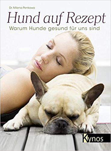 Hund auf Rezept Warum Hunde gesund für uns sind Hunde