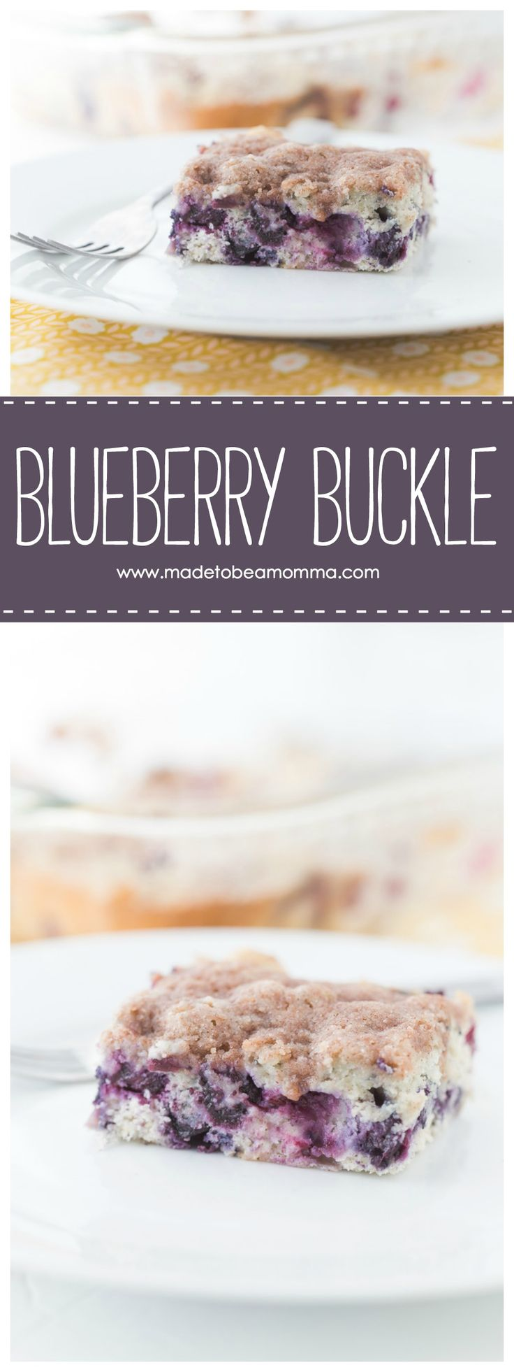 Blueberry Buckle cake is the perfect dessert paired with ice cream on a hot day!