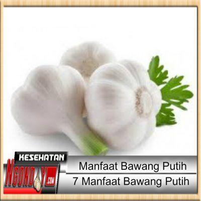 NGONDOY.com - Siapa yang tak kenal dengan bawang putih? Bawang putih adalah suatu ramuan popular yang tidak perlu diperkenalkan lagi.