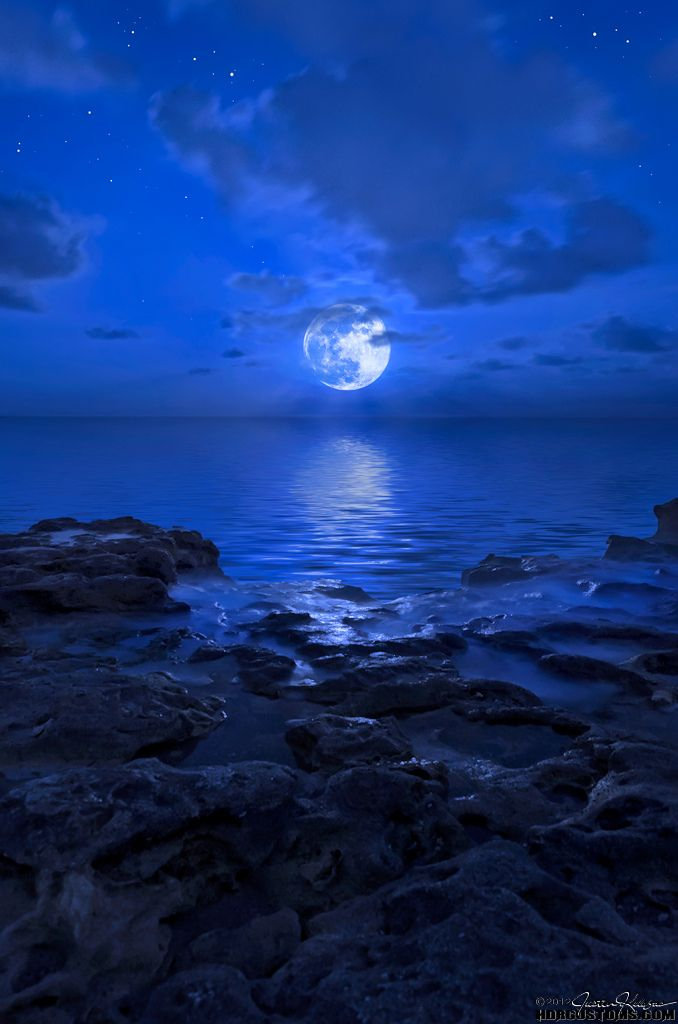 wowtastic-nature:2012 Blue Moon rising over Jupiter Beach, Florida by  HDRcustoms (very busy)  on Flickr(Original size - Height: 1024px - Width: 678px)