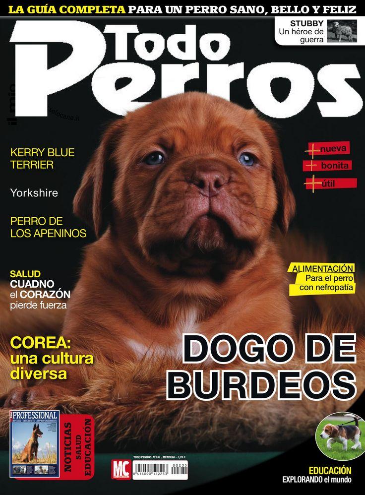 Revista TODO PERROS 235, dogo de burdeos, perro de los apeninos. La guía completa para un #perro sano, belñlo y feliz.