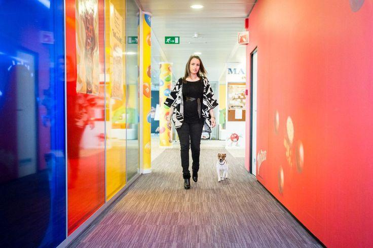Huisdieren op de werkvloer: het is goed voor de gezondheid, ze verbeteren de sfeer en verlichten de werkdruk. Dat hebben ze bij Mars goed begrepen.
