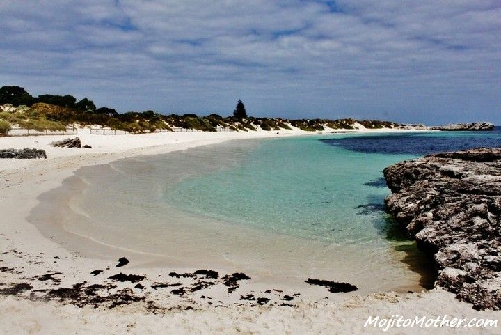Rottnest Island in Western Australia: www.ytravelblog.com/visit-perth-the-top-12-reasons/