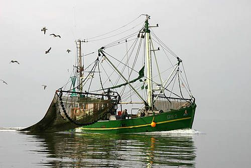 Visserij op de Waddenzee