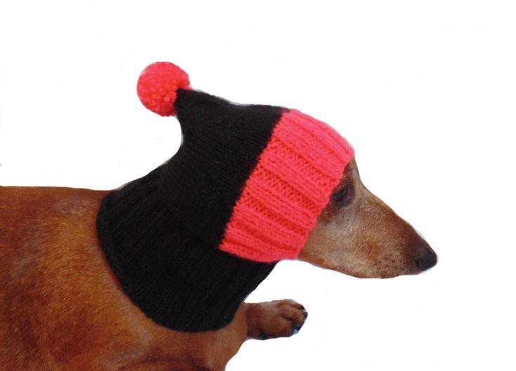 Hund Warme Ohren