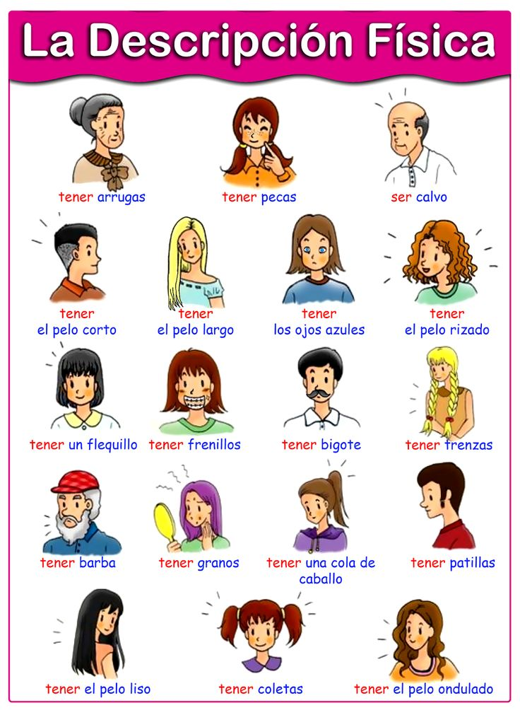 Spanish vocabulary: physical descriptions. ✿ More inspiration at http://espanolautomatico.com ✿ Spanish Learning/ Teaching Spanish / Spanish Language / Spanish vocabulary / Spoken Spanish / Free Spanish Podcast / Español Automatico ✿ Share it with people who are serious about learning Spanish!