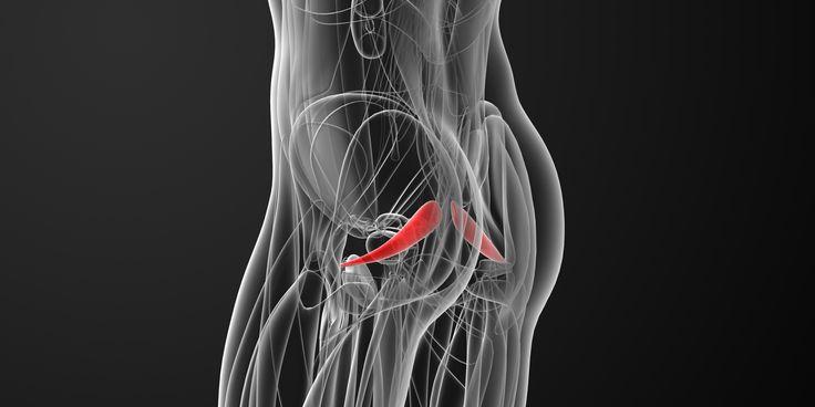 Что такое синдром грушевидной мышцы и как от него избавиться - https://lifehacker.ru/2016/11/09/sindrom-grushevidnoj-myshcy/