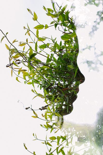 Face in the Bush ~ multiple exposure shot by talented photographer Archie Campbell that artistically represents our connection with nature despite the technological age we live in