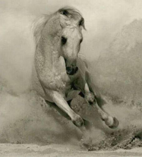 GUDI-Handpainted Art Modern Abstract Oil Painting Running Horse Wall Decor