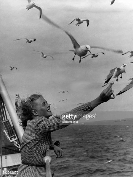 Germany, Woman on a ship is feeding gulls - Photographer: Hilmar Pabel- Published by: 'Erika' 01/1941Vintage property of ullstein bild