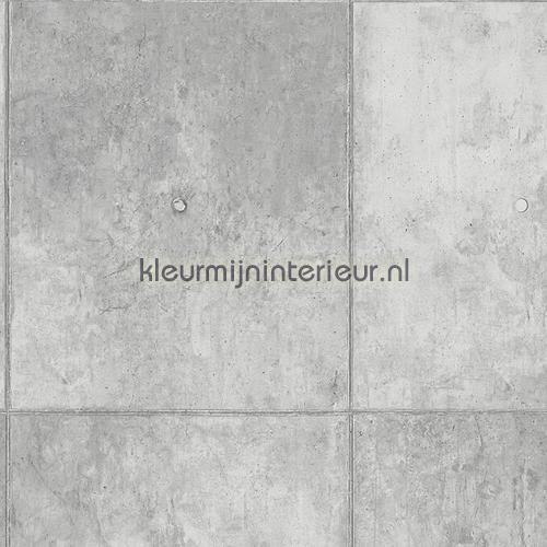 Behang IH51151109 uit de collectie Reality 2 van Noordwand ontdek je bij kleurmijninterieur