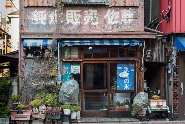日本堤 DSC_9716 - Yoshiyuki ftyfty123