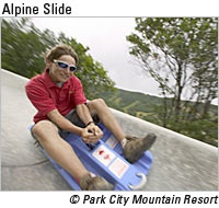 177 best summer in park city images on pinterest park city utah the alpine slide is located at park city mountain resort and is a popular attraction for visitors sciox Gallery