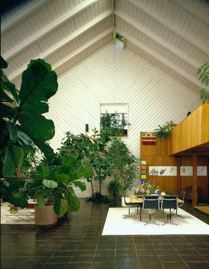 Interior Landscaping Plants