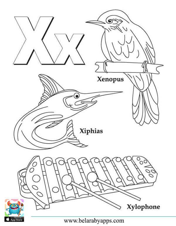 Phonics The Letter X كورس الصوتيات
