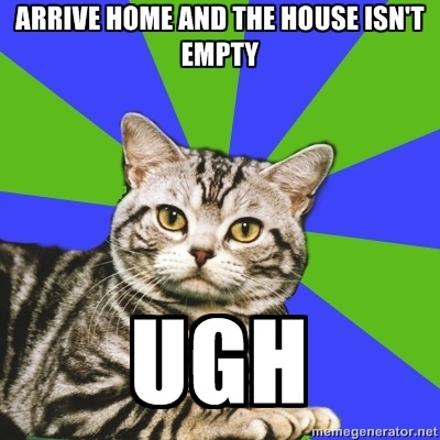 Introvert Cat - Arrive home and the house isn't empty ugh= literally every day