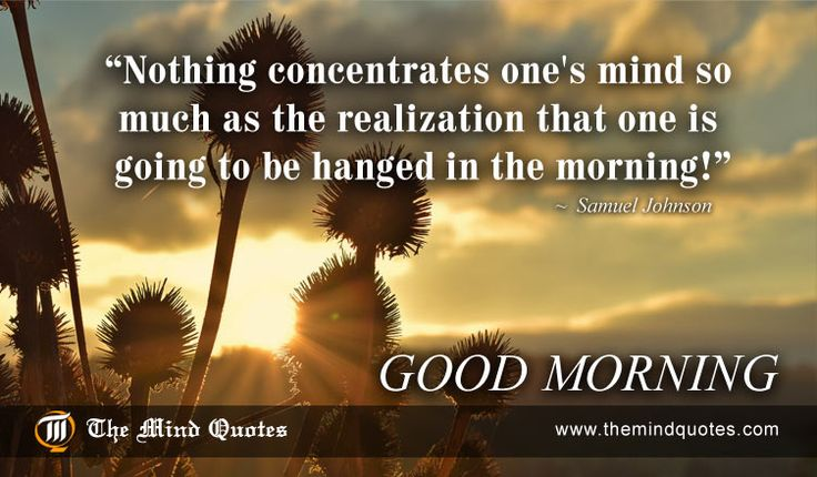 "themindquotes.com : Samuel Johnson Quotes on Morning and Life""Nothing concentrates one's mind so much as the realization that one is going to be hanged in the morning!"" ~ Samuel Johnson"