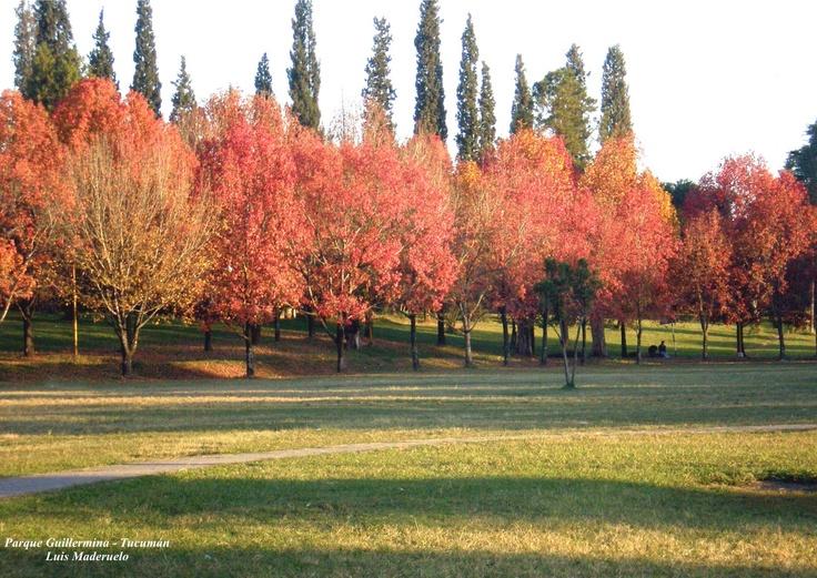 Parque Guillermina, , Tucumán Argentina