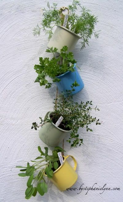 coffee cups, drainage holes added, planted with herbs, then hung outside on a wall.
