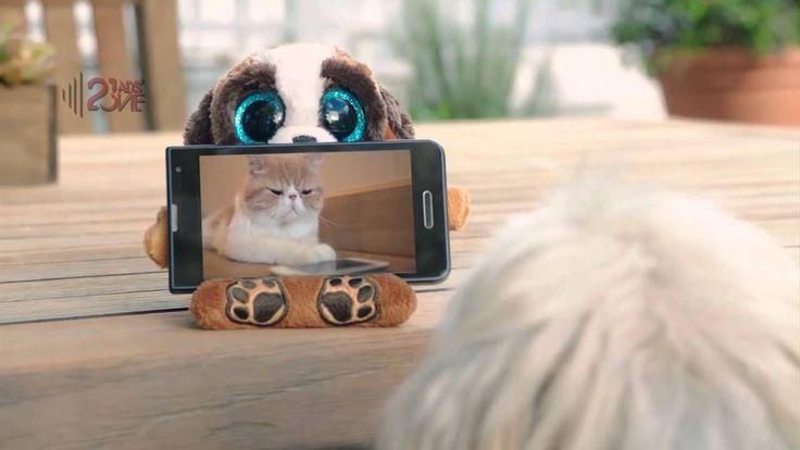 Ty Peek-A-Boos | Peek A Boo Song Ad