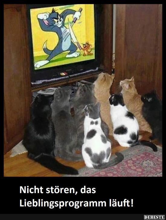 Best pictures, videos and sayings and there are daily new funny Facebook pictures on DEBESTE.DE. Jokes and spells are posted here every day!