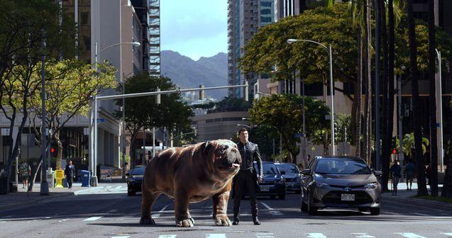 Un Homme et son chien, le retour ...