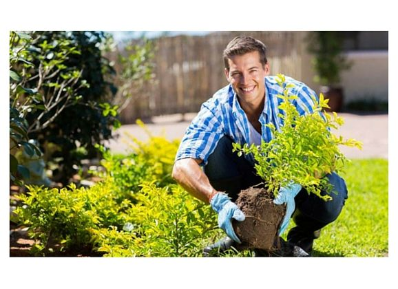 10 Tips to Prevent Gardening Injuries from a Physio
