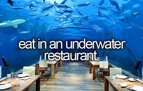 Underwater restaurant, or restaurant with huge aquarium