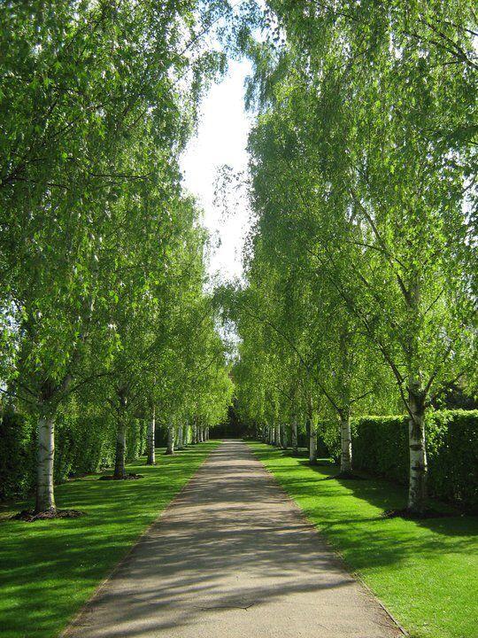 Writtle college, Chelmsford, Essex
