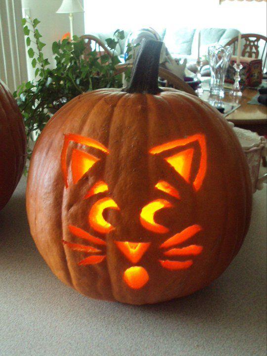 Cat pumpkin carving halloween stuff pinterest for Pumpkin kitty designs