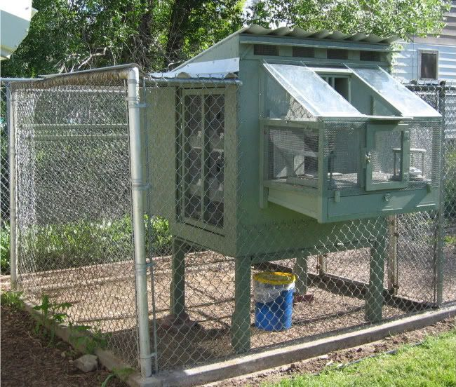 Best racing pigeon loft design pictures to pin on for Pigeon coop ideas