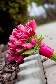 Bouquets  Hot Pink  Bouquets Flowers  Bridesmaid Bouquets  Pink TulipHot Pink Tulip Bouquets