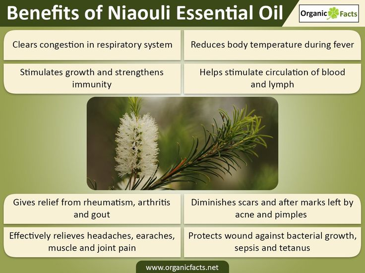 The health benefits of Niaouli Essential Oil can be attributed to its properties like analgesic, anti rheumatic, anti septic, bactericidal, balsamic, cicatrisant, decongestant, expectorant, febrifuge, insecticide, stimulant, vermifuge and vulnerary. Niaouli is a large evergreen tree. The botanical name of Niaouli is Melaleuca Viridiflora and it is a native to Australia and a few neighbouring places. Due to the disinfectant and anti septic properties, it is widely used in a large variety of…