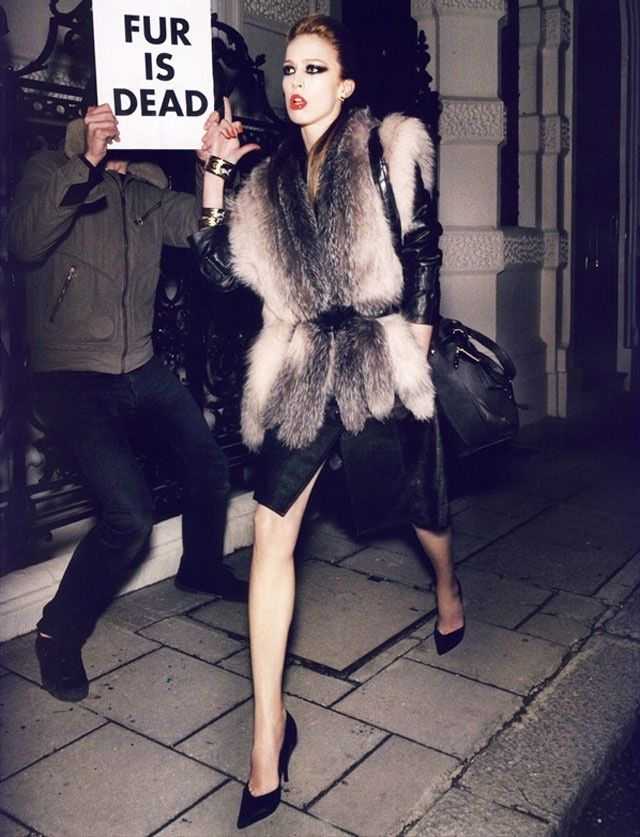 fur is dead? Fur is not essential or needed in the industry of fashion. It has be proven that some designers are still using fur designs in their up and coming collections and this needs to be stopped. In a recent study in Britain, people were asked whether they would wear fur and 95% said NO.