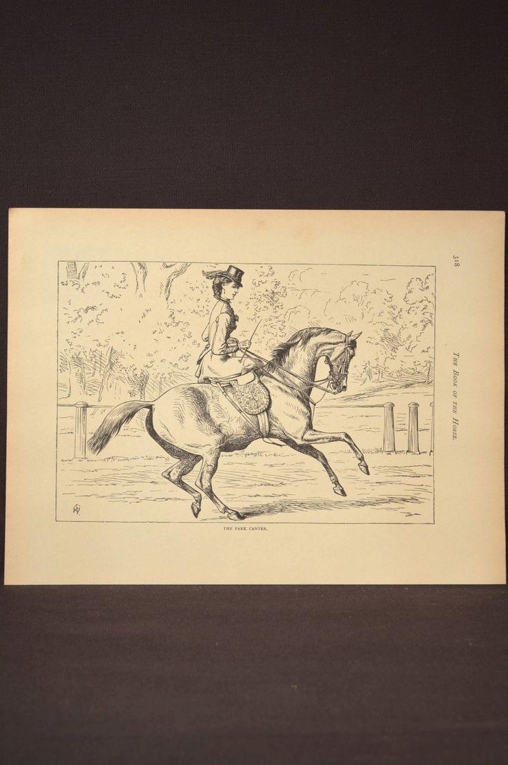 Amazing Wall Art Horses Festooning - Wall Art Collections ...