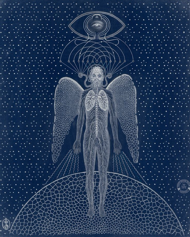 Transcendent Man, Blue Print by DMD