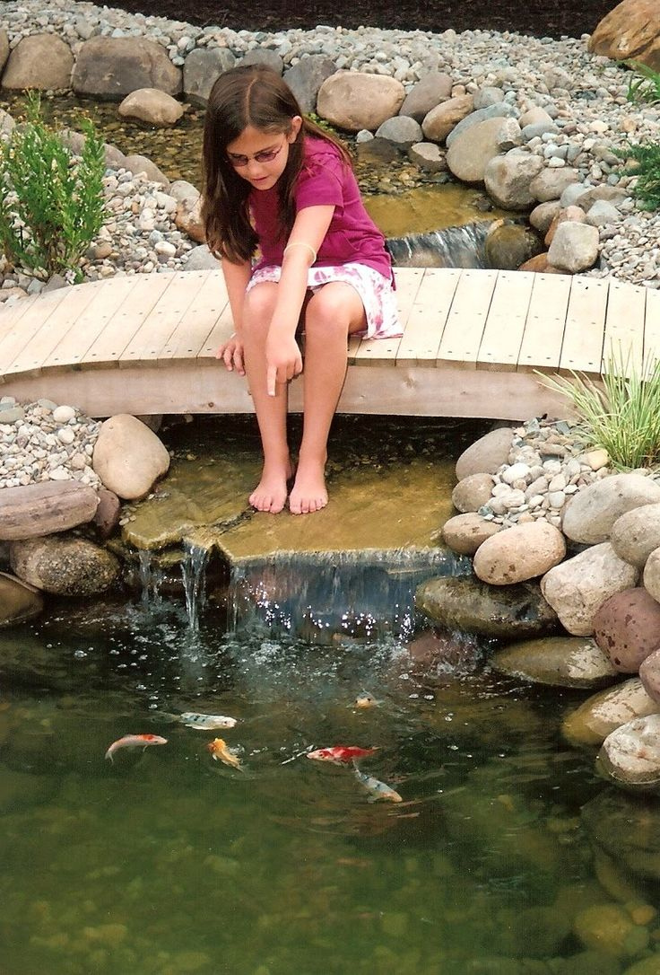 Pond Bridges For Closer View to Fish Ponds