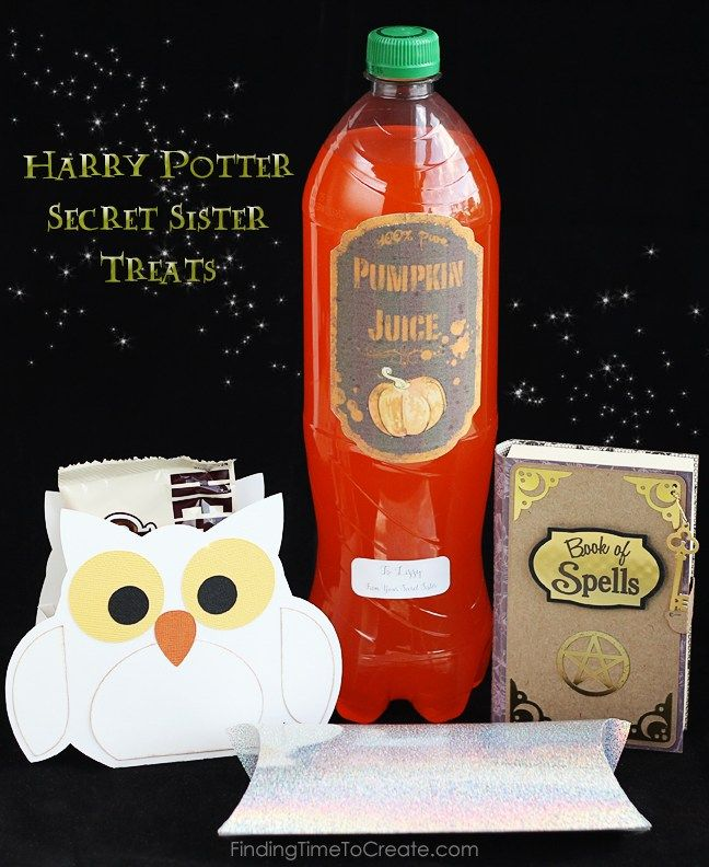 Harry Potter Secret Sister Treats for Girls Camp - Finding Time To Create