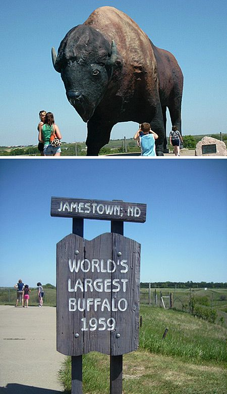 World's Largest Buffalo in Jamestown, North Dakota - been here many times with the kids and we try to get here every year.