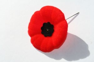 Remembrance Day Sites.