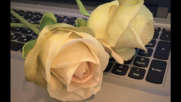 Роза из велюра