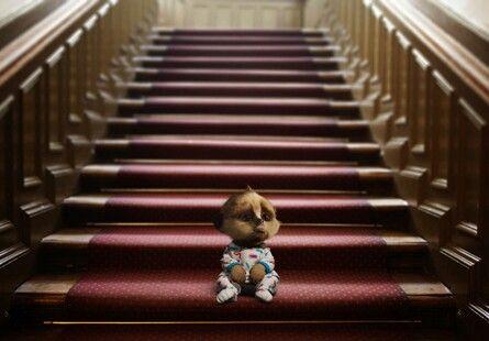 Baby Oleg on Naughty Step
