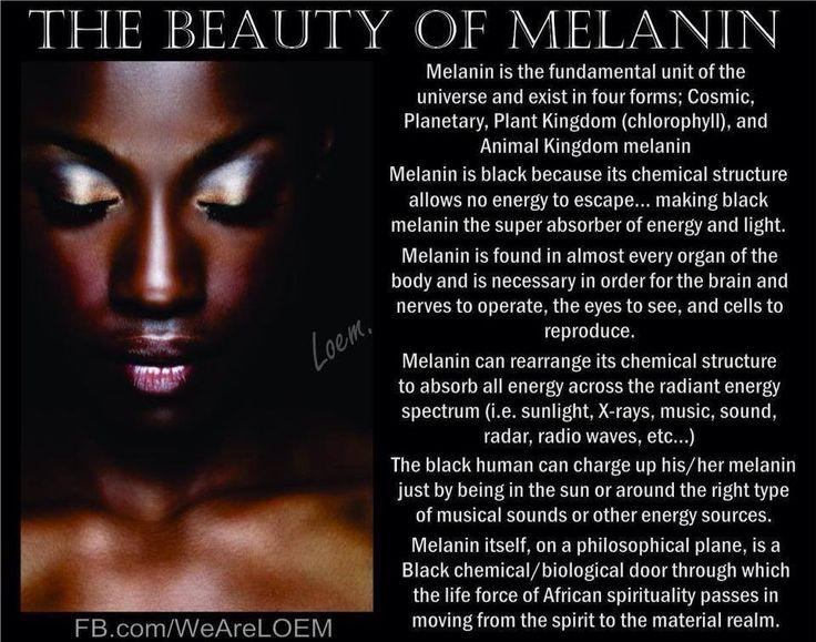 The history of Melanin Black History memes Pinterest