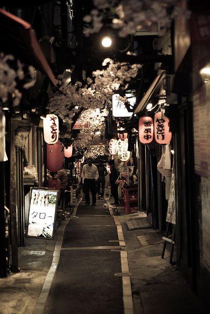 Au printemps, en promenade dans une des ruelles de Tokyo...Japon