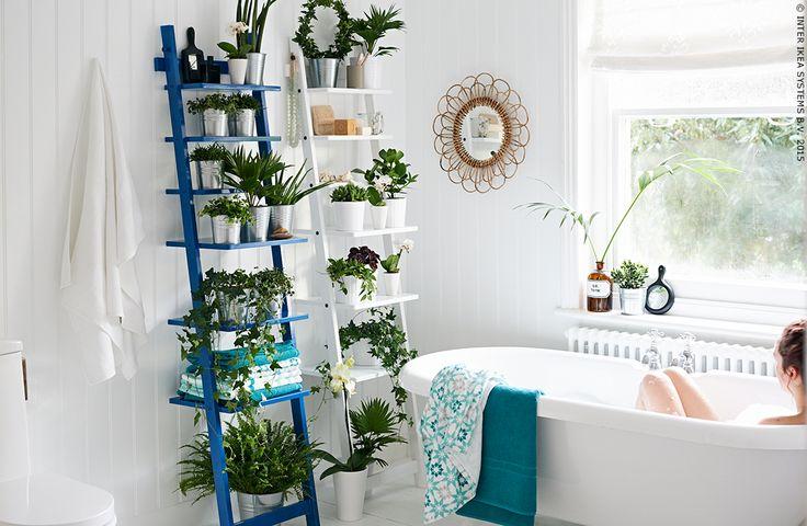 Badkamer Spiegelkast ~ dan 1000 idee?n over Natuur Badkamer op Pinterest  Oceaan Badkamer